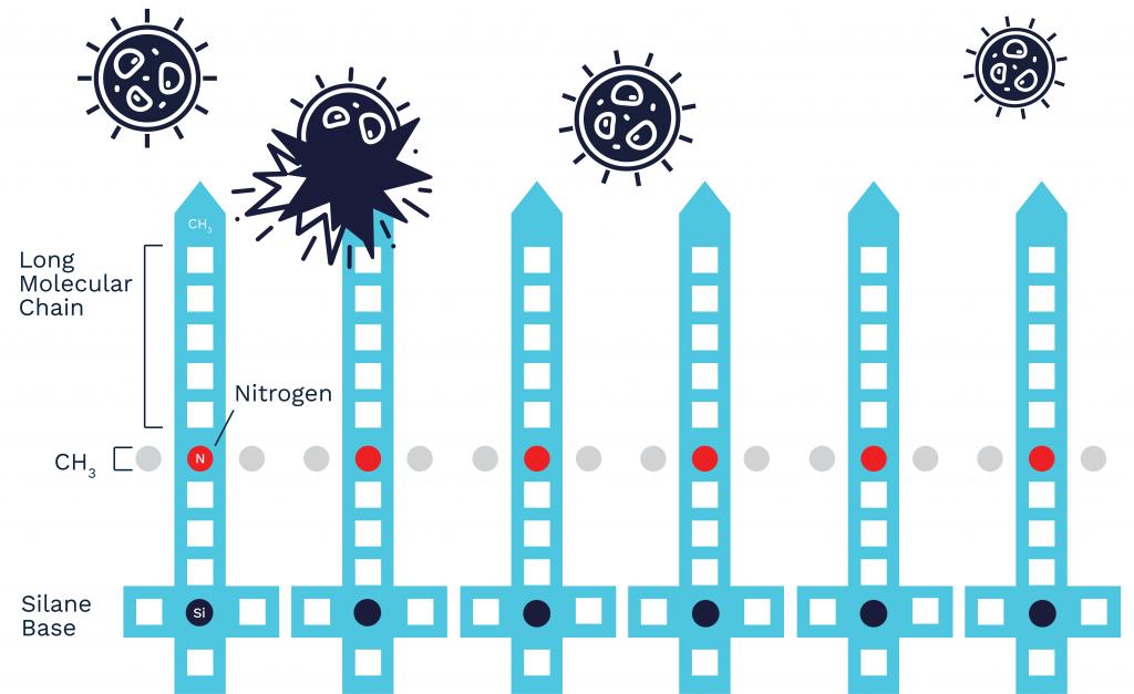 ZOONO Molecule diagram
